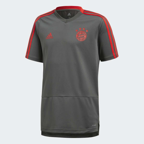 FC Bayern Training Voetbalshirt grijs CW7265