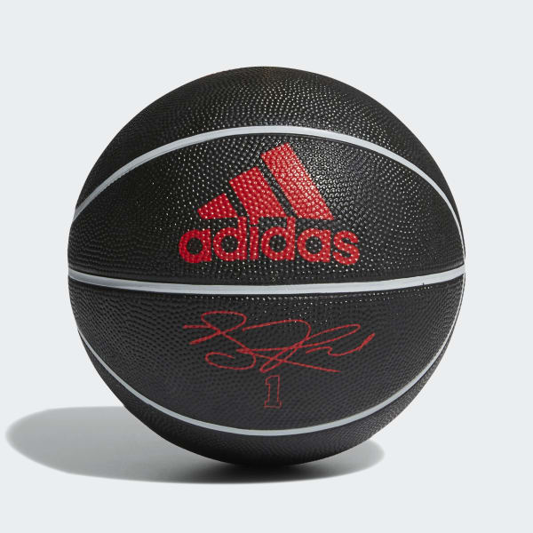 Rose Signature Mini Basketball Red AZ3980