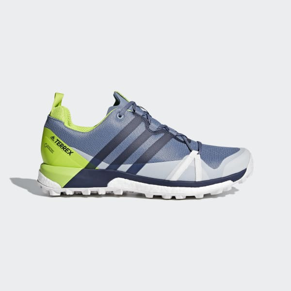 TERREX Agravic GTX Shoes Grey CM7613