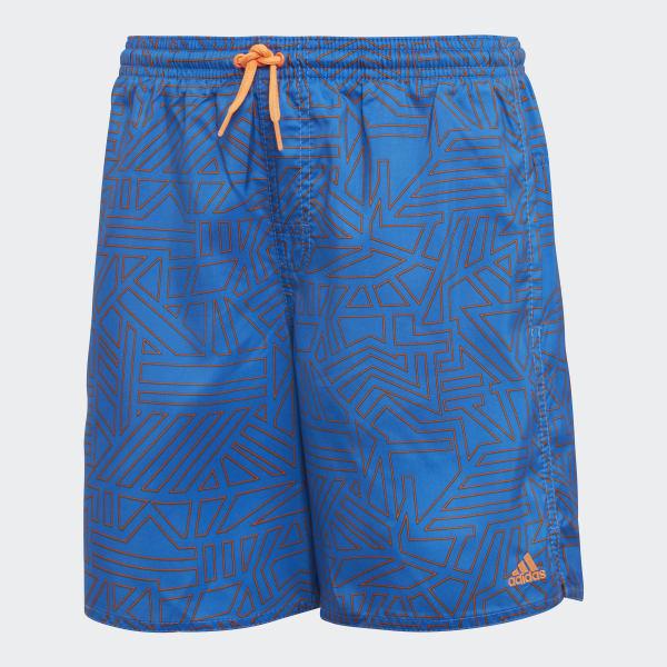Graphic Swim Shorts Blue DJ2161