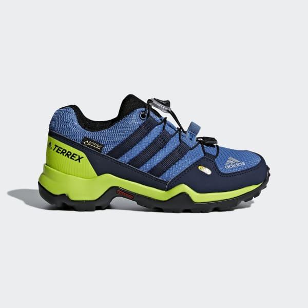 Chaussure TERREX GTX bleu CM7704