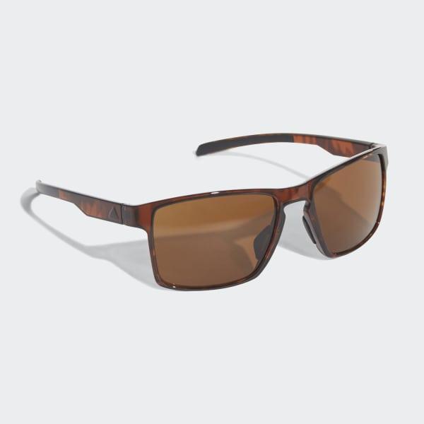 Wayfinder Sunglasses Brown / Black / Brown CJ5627