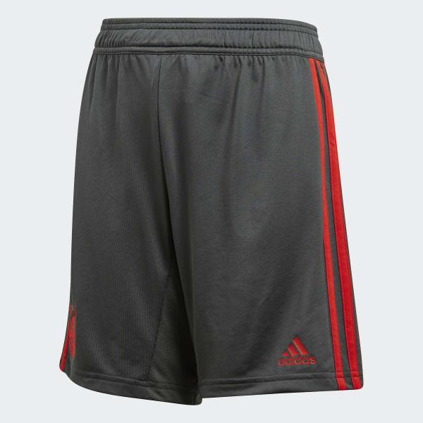 FC Bayern Training Shorts Grey CW7257