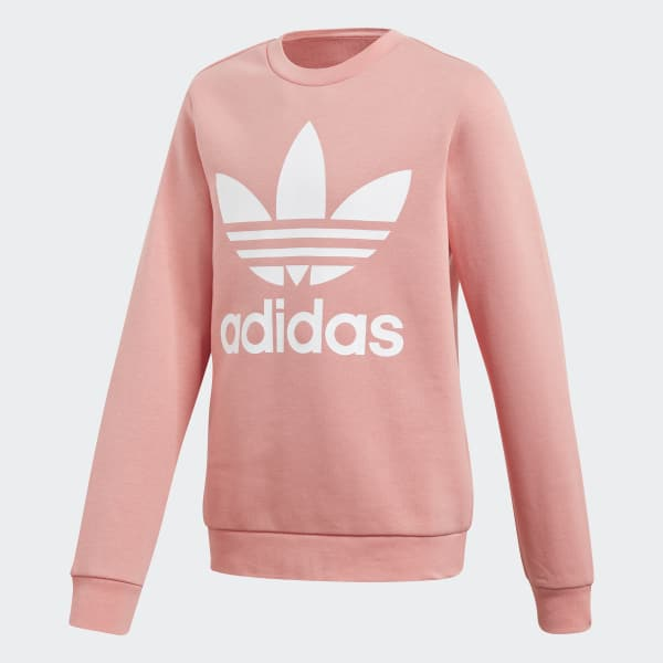 Fleece Crew Sweatshirt Pink DT8095
