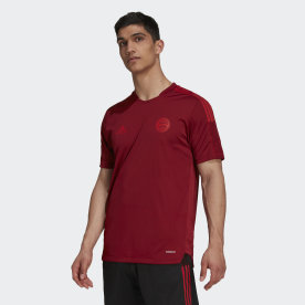 FC Bayern Tiro Training Jersey