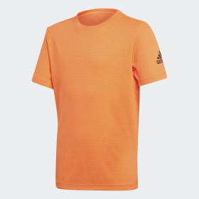 Camiseta Training Climachill