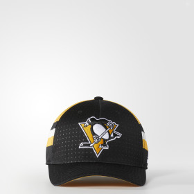 Penguins Structured Flex Draft Cap