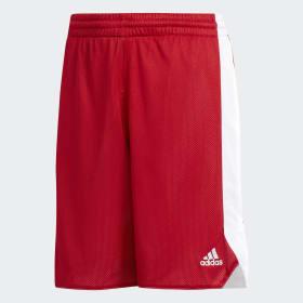 Crazy Explosive Reversible shorts