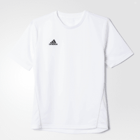 Camiseta entrenamiento Core 15