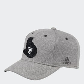 Senators Team Flex Cap