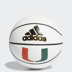 Hurricanes Mini Autograph Basketball