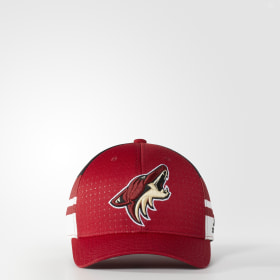 Coyotes Structured Flex Draft Hat