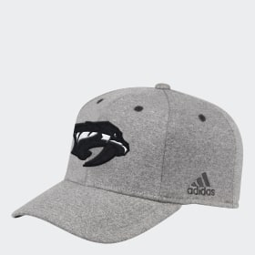 Predators Team Flex Cap