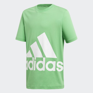 Camiseta Essentials Big Logo Energy Green / White DJ1755