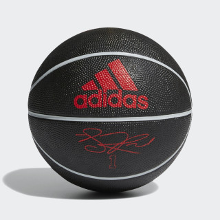 Rose Signature Mini Basketball Scarlet / Black / Stone AZ3980
