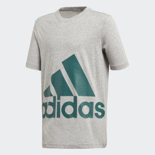 Essentials Big Logo T-Shirt Medium Grey Heather / Noble Green DJ1754