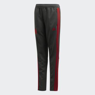 Pantalón de entrenamiento FC Bayern Grey/ Red CW7293