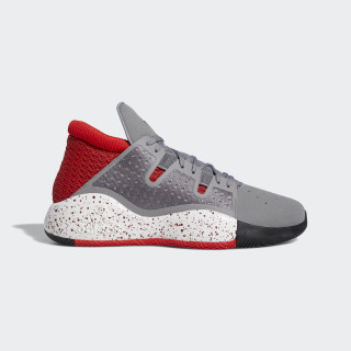 Pro Vision Shoes Grey / Collegiate Burgundy / Active Red G27754