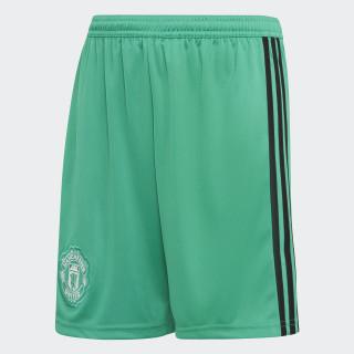 Manchester United Goalkeeper hjemmebaneshorts Blaze Green / Black / White CG0073