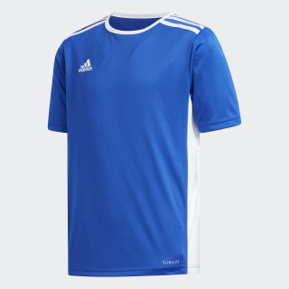 Camisa Entrada 18 Infantil BOLD BLUE/WHITE CF1049