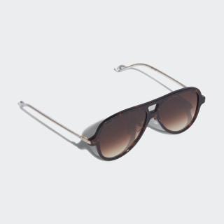 AOK001 Sunglasses Braun-Schwarz / Gold Metallic / Mystery Brown CK4102