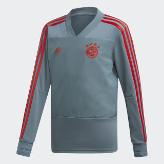 FC Bayern Training Jersey Raw Green / Red CW7295