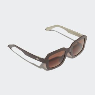 AOR021 Sunglasses Noble Maroon / Trace Khaki / Noble Red CL1648