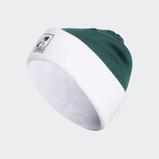 Josh Beanie Collegiate Green / White EC6480