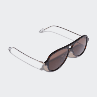 AOK001 Sunglasses Braun-Schwarz / Gold Metallic / Night Brown CK4103