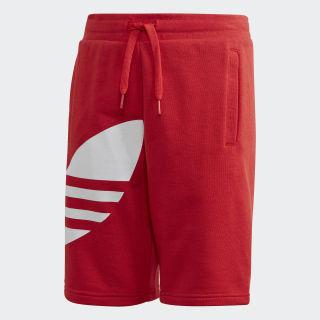 Short Big Trefoil Lush Red / White FM5658