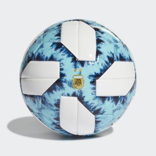 Minipelota Argentina 19 White / Light Aqua / Blue Night / Black DY2546