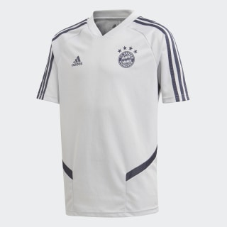 FC Bayern München Trainingstrikot Lgh Solid Grey / Trace Blue EJ0958