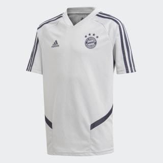 FC Bayern træningstrøje Lgh Solid Grey / Trace Blue EJ0958