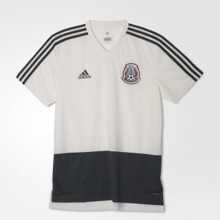 Jersey de Entrenamiento Selección de México 2018 OFF WHITE/UTILITY IVY F16 CF0516