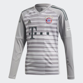 FC Bayern Goalkeeper Jersey Grey One / Light Granite / Utility Ivy DQ0705