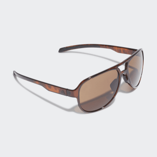 Pacyr Sunglasses Brown / Core Black / Brown CK1032