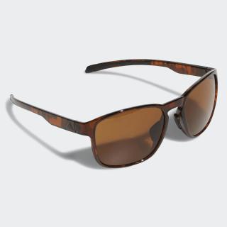 Солнцезащитные очки Protean brown / black / brown CJ5645