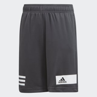 Shorts Cool grey six DZ5964