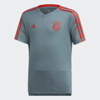 Camiseta de entrenamiento FC Bayern Raw Green / Red CW7266