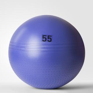 Гимнастический мяч Gymball - 55cm Purple raw purple BH0166