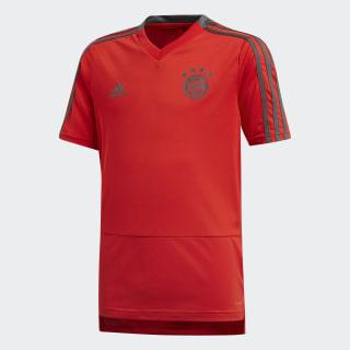 Camiseta de Entrenamiento FC Bayern RED/UTILITY IVY CW7264