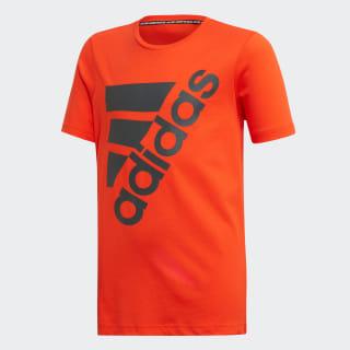 Big BOS T -shirt active orange / grey six DV0801