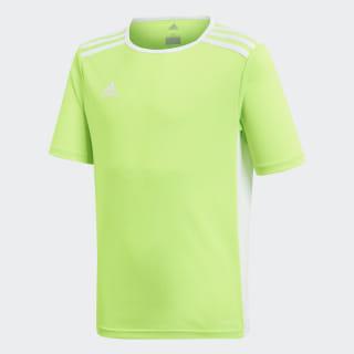 Camiseta Entrada Solar Green / White CE9755