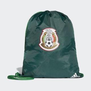 Bolsa Deportiva Selección de México Collegiate Green / Green / White CF5156