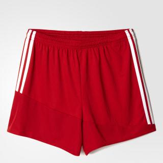 Regista 16 Drydye Shorts Power Red / White AP1870
