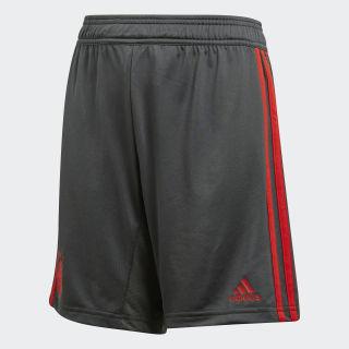 Short d'entraînement FC Bayern Grey/ Red CW7257