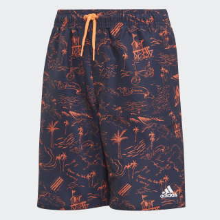 Graphic Swim Shorts Legend Ink / True Orange DQ3030
