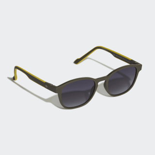 AOR030 Sunglasses Legend Ivy / Legend Ivy / Bold Gold CM1395
