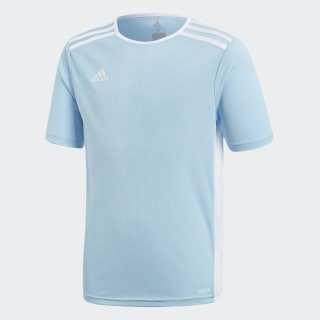 Entrada Jersey Clear Blue / White CF1045