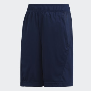 Training Equipment Shorts Collegiate Navy / White DV2931